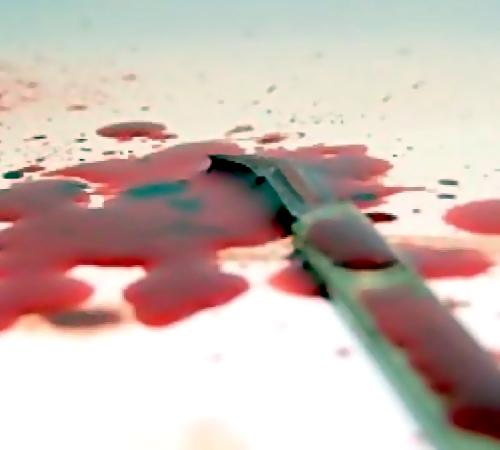 Изрезавший женщину вновогоднюю ночь мужчина схвачен новосибирской полицией