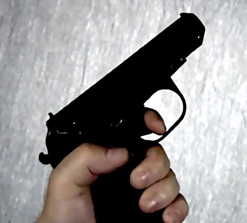 Погоня за нетрезвым водителем завершилась стрельбой