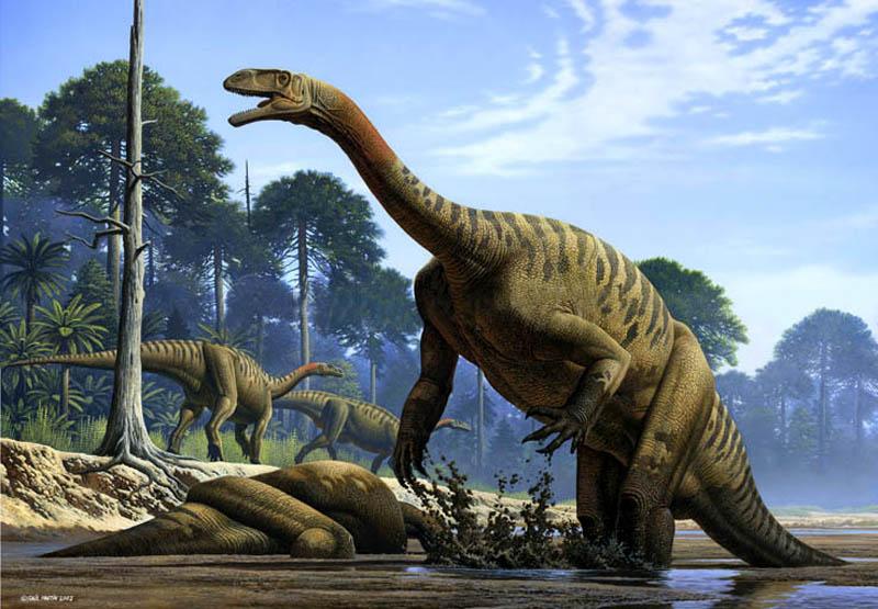 Ученые отыскали вкостях динозавра Юрского периода следы белков