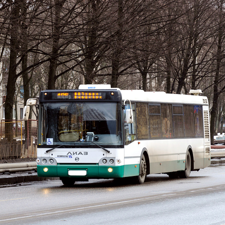 ВПриморском районе шофёр автобуса сбил женщину