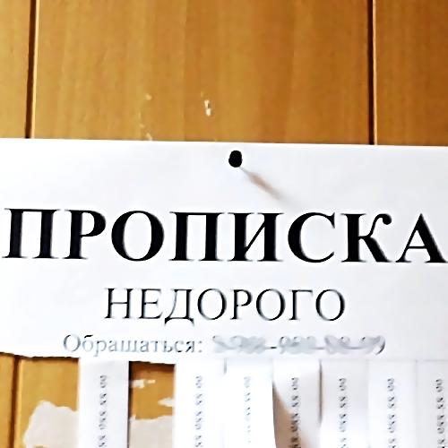 Прописавшая 31 человека воднокомнатной квартире жительница Уссурийска предстанет перед судом