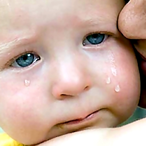 ВНовосибирске мать оставила сына сприставами иуехала вотпуск