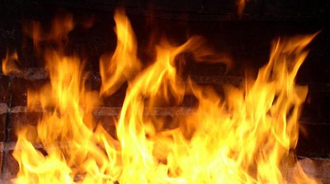 ВЛенобласти пенсионерка сгорела живьем насобственной даче
