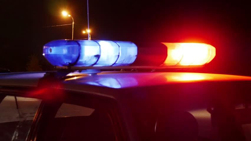 Автобус сдетьми попал вДТП наПриморском шоссе, медпомощь понадобилась двоим