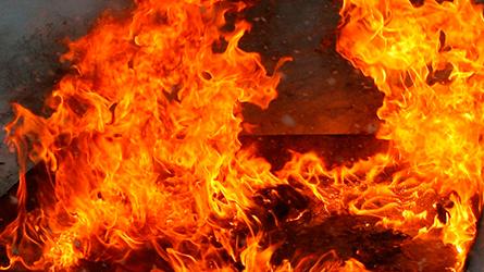ВКарелии пожар забрал жизни 2 человек