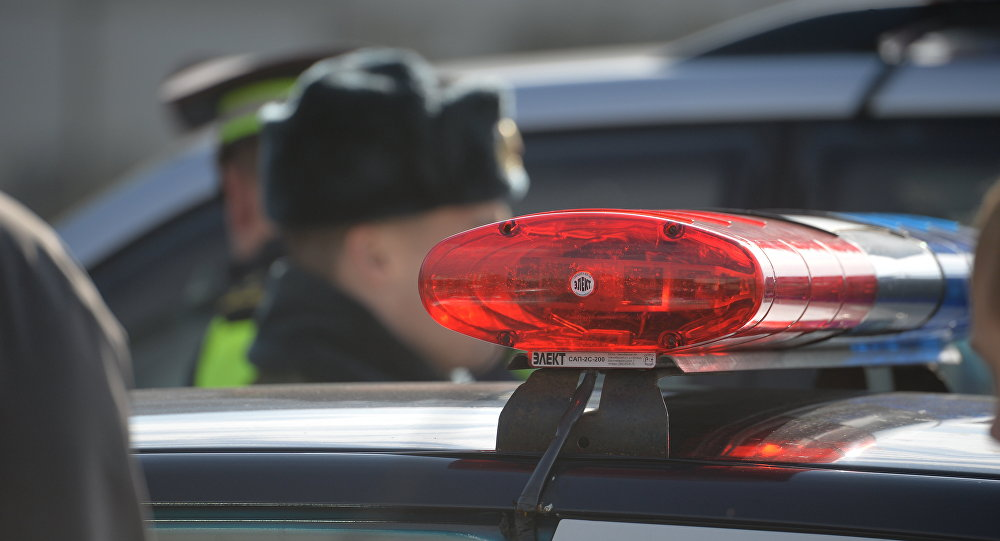 ВТульской области неизвестный сбил насмерть подполковника милиции