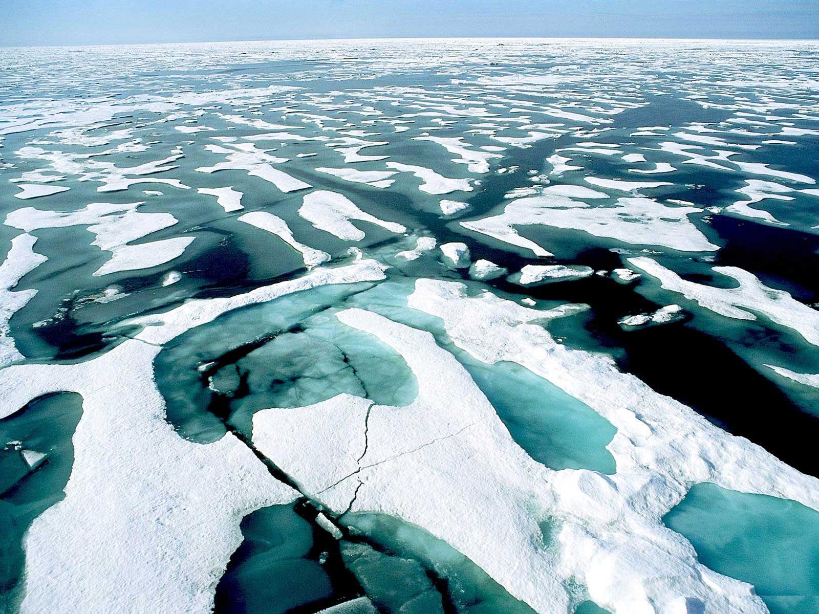 Картинки по запросу северный ледовитый океан
