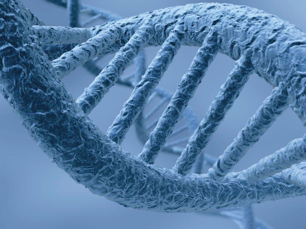 Найдены гены, отвечающие запсихологическое благополучие человека