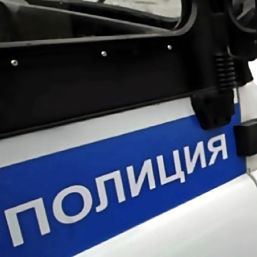 Таинственное убийство вПетербурге: впарке Сосновка отыскали труп голой женщины