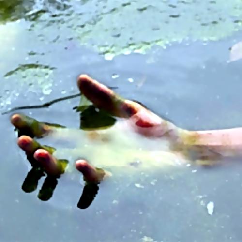 ВПодмосковье уберега реки найдено тело пропавшего без вести мужчины