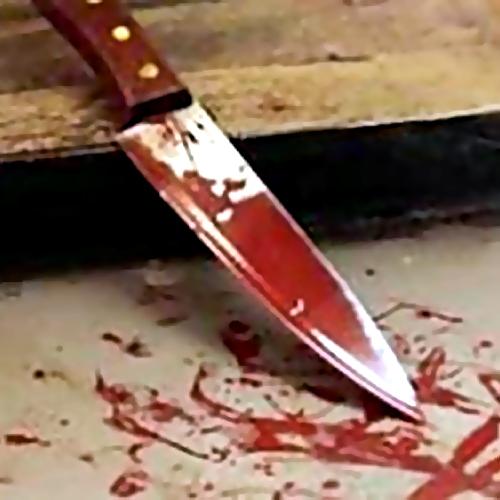 Женщина зарезала собутыльника впроцессе ссоры вПушкине