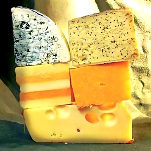 ВМосковской области построят завод попроизводству сыров сплесенью