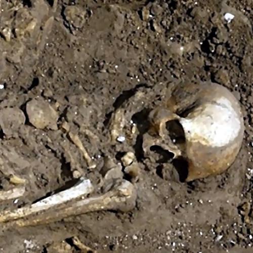 СКР проводит проверку после обнаружения скелета вказанском овраге
