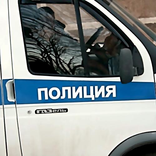 СКР разбирается вобстоятельствах травмирования девушки ваэропорту Пулково