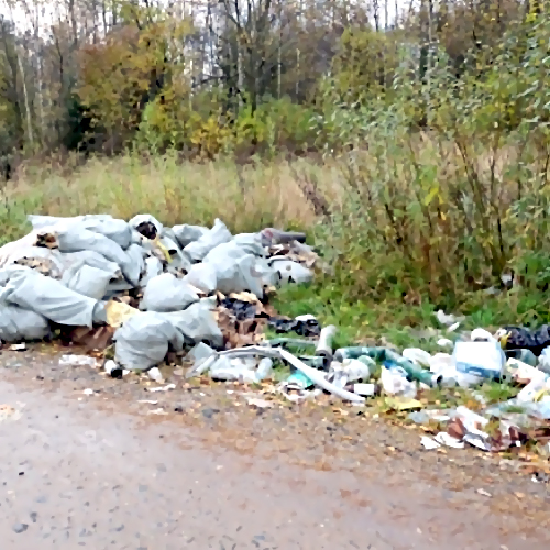 Руководитель СКпоручил провести проверку посюжету остихийных свалках вПодмосковье