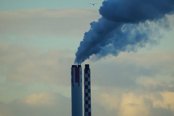 ВМосковской области профессионалы объявили обэкологической опасности
