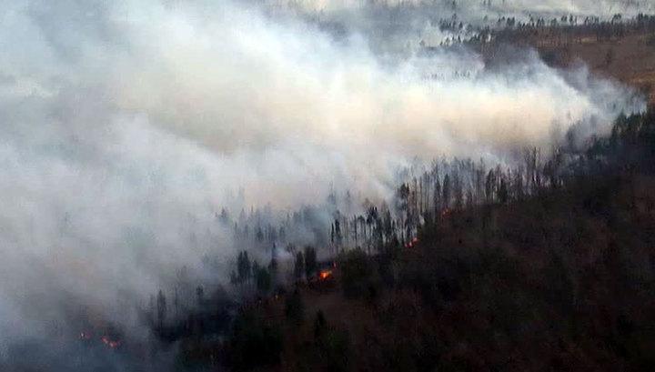 Лесные пожары вСибири стали самыми масштабными за 10 тыс. лет