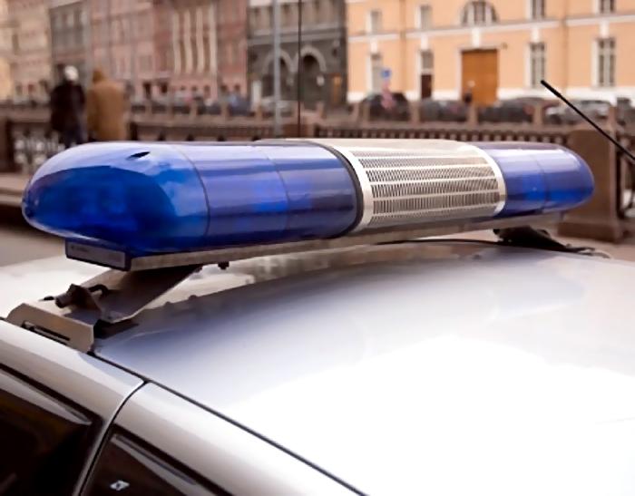 НаВасильевском автовор отбивался отвладельца машины молотками