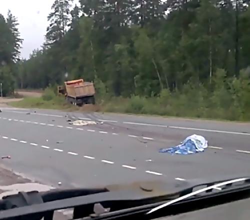 Натрассе «Скандинавия» в трагедии сКамАЗом погибли двое человек