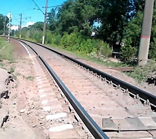 ВКингисеппском районе мужчина бросился под поезд из-за несчастной слабости