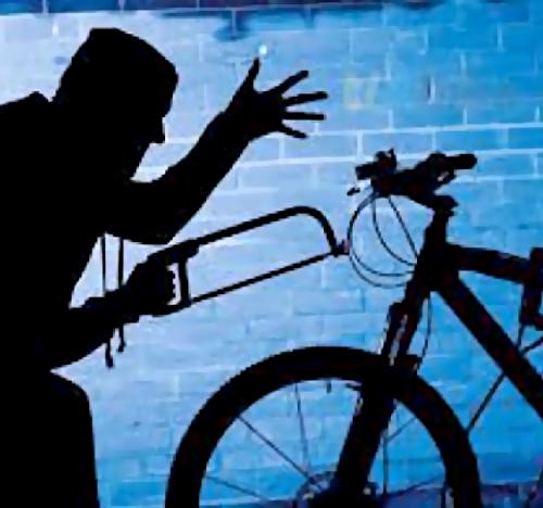 Похититель велосипедов лишен свободы на1 год и2 месяца