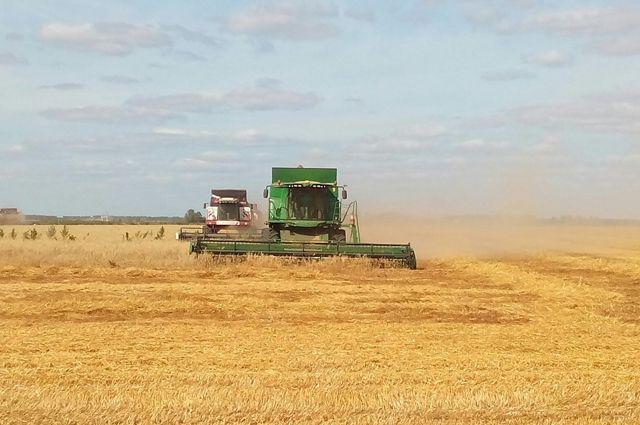 ВСамарской области собран рекордный урожай зерновых