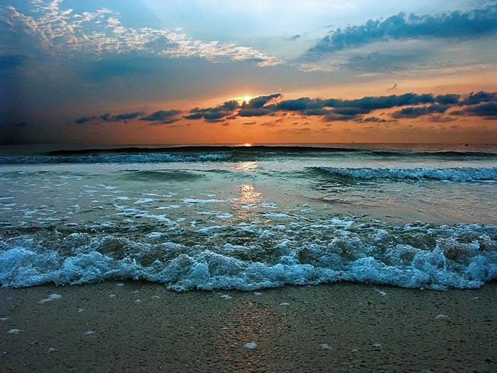 За50 лет 40% Черного моря стали непригодными для жизни— Ученые