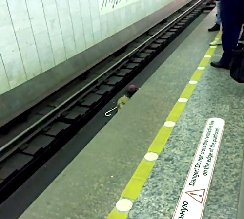 Слепой мужчина упал нарельсы настанции метро «Чкаловская»