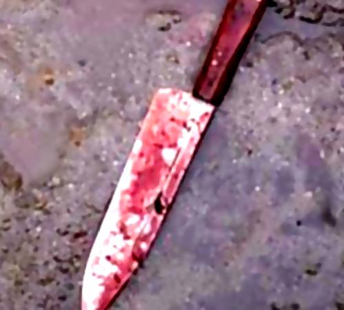 ВМосковской области найдено изрезанное тело женщины
