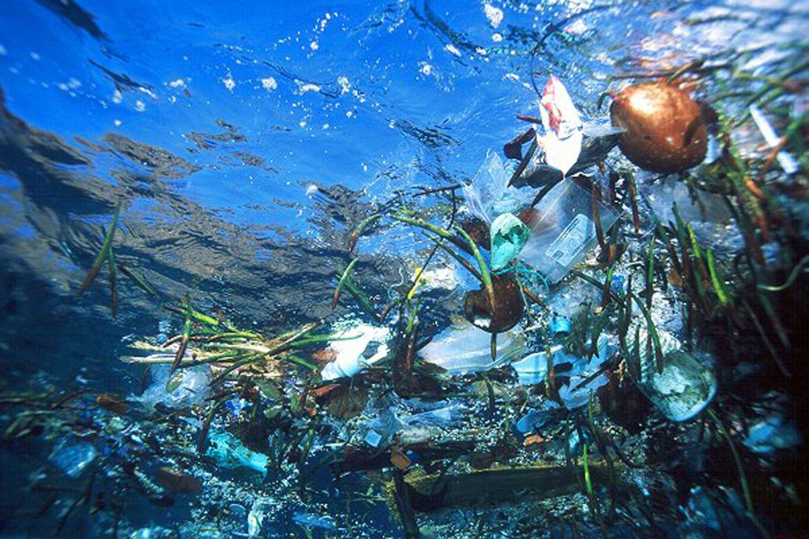 В 2050г пластик вытеснит рыбу изМирового океана— Госдеп США