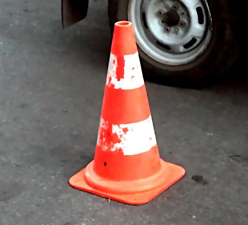 НаКараваевской улице автомобиль насмерть сбил пешехода ссобакой