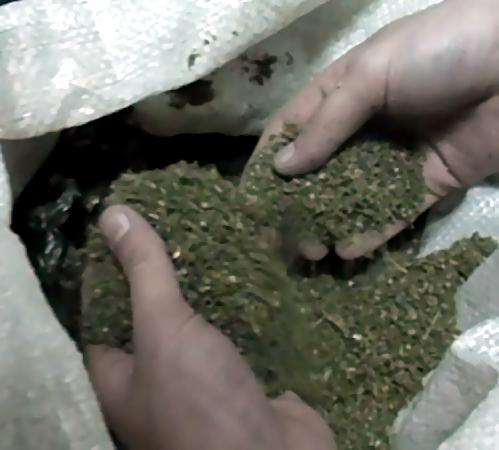 ВВоронежской области изъята крупная партия наркотиков
