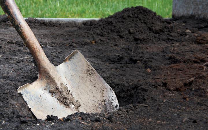 ВПетербурге супруг убил жену изакопал тело влесу