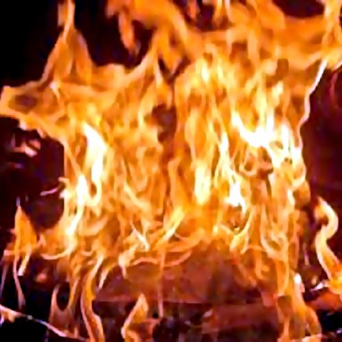 ВЛомоносовском районе отыскали сожженного мужчину, замотанного впроволоку