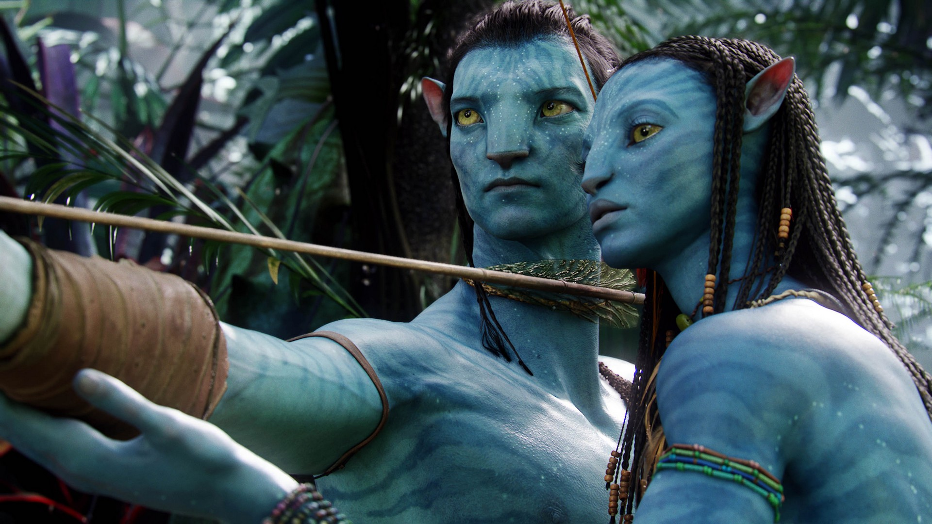 Avatar: extended blu-ray collector 2019s edition review