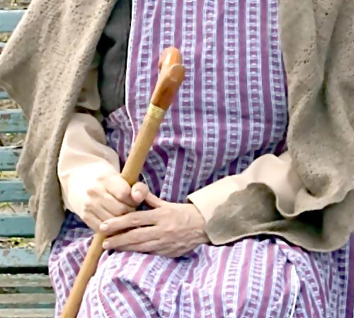 73-летняя пенсионерка задержала 2-х преступников всвоей квартире вНовосибирске