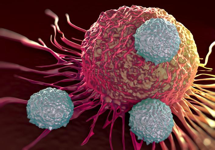 Одно лекарство может использоваться для лечения всех типов рака