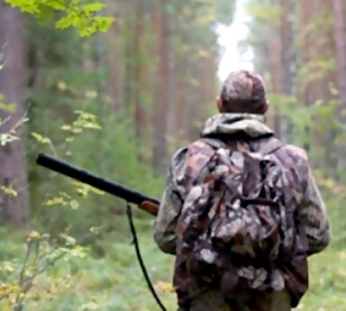 Под Самарой охотник случайно застрелил женщину, собиравшую грибы