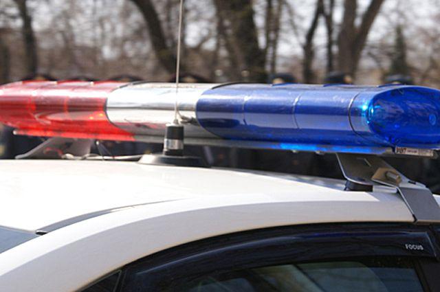 ВКузоватовском районе нетрезвый намашине улетел вкювет, пострадала пассажирка