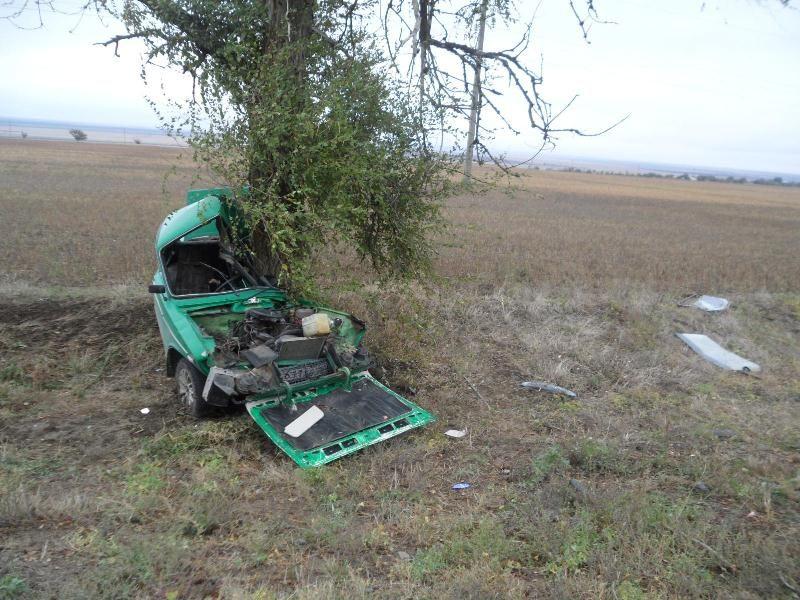 НаСтаврополье «шестёрка» врезалась впридорожное дерево, умер шофёр
