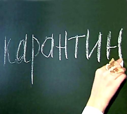 Из-за пневмонии водной изХабаровских школ объявлен карантин