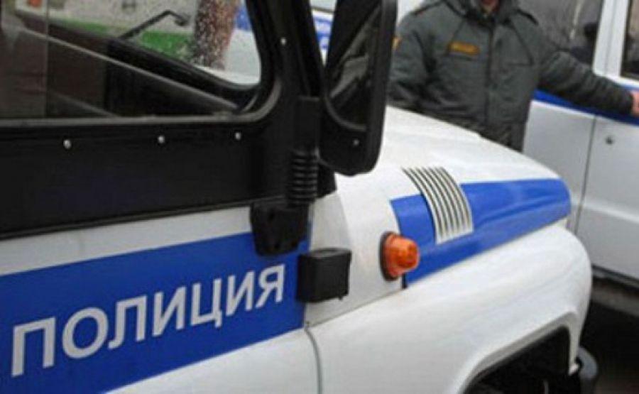 ВАнгарске двое нетрезвых ППС-ников врезались наавтомобиле вдерево