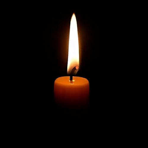 Летняя Елена Кузьмина, пропавшая вНижнем Новгороде летом, найдена погибшей