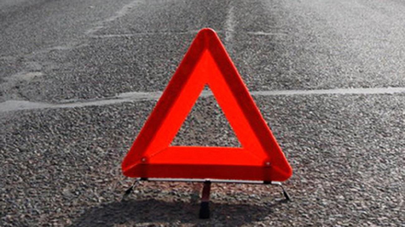 Натрассе вРостовской области рейсовый автобус насмерть сбил пешехода