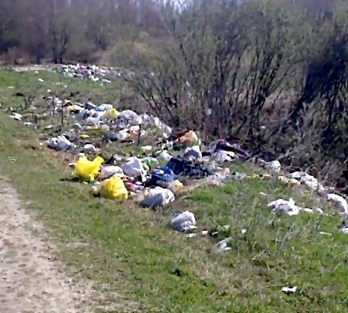 Опасные отходы сбрасывали грузовые автомобили напочву под Волгоградом