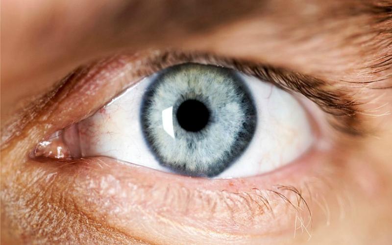 Всего один укол способен излечить слепоту— Ученые ликуют