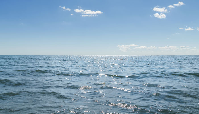 Ученые сообщили о новой мертвой зоне в Индийском океане
