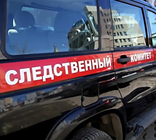 Дмитрий Вахрушкин, Самара. супруга идети подверглись нападению