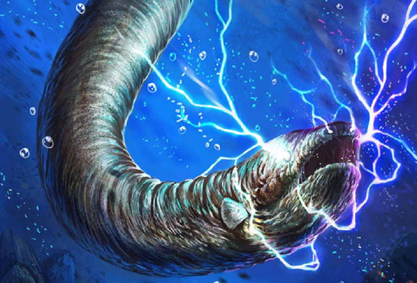 Electric Eel Journey 2 The Mysterious Island  All