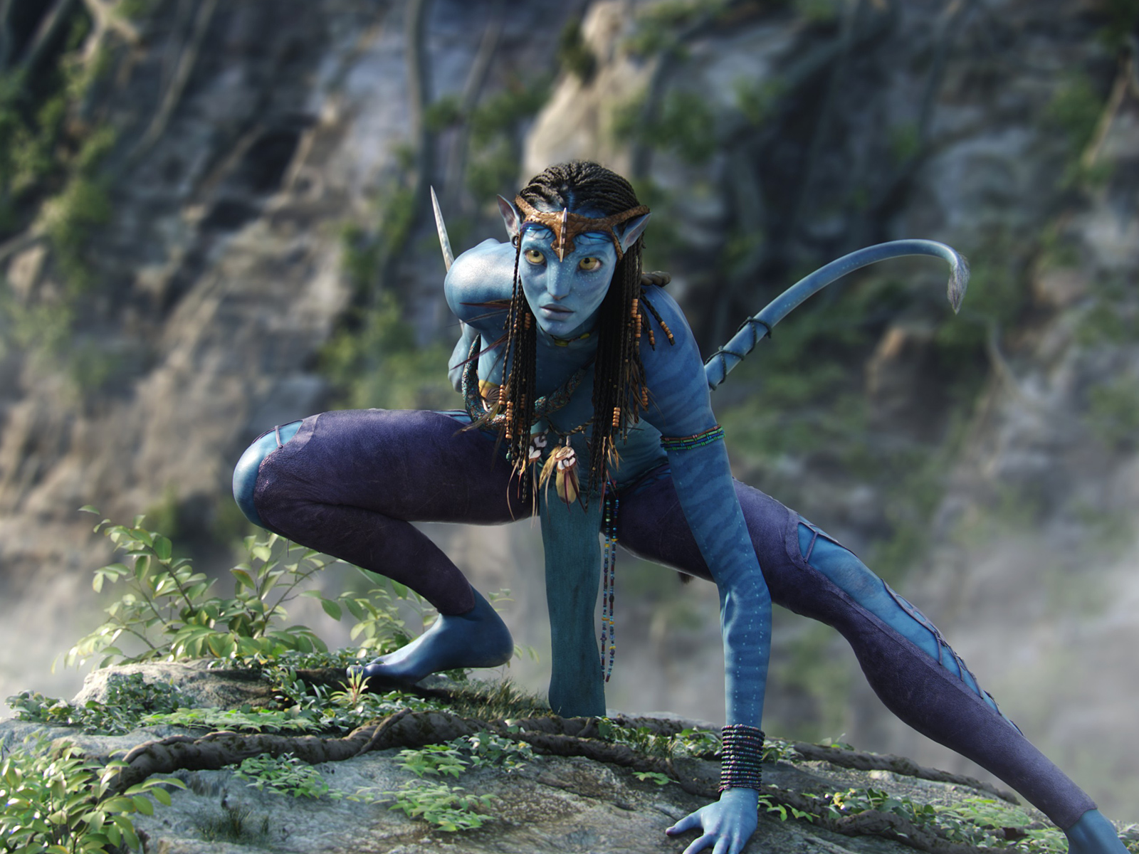 Джеймс Кэмерон назвал дату начала съемок новых частей Аватара